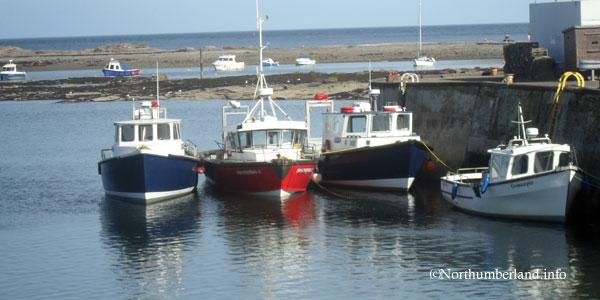 Seahouses Boats